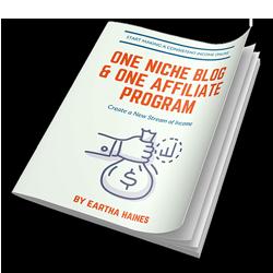 niche blog report